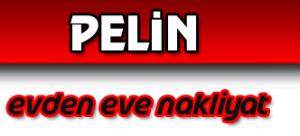 pelin-evden-eve